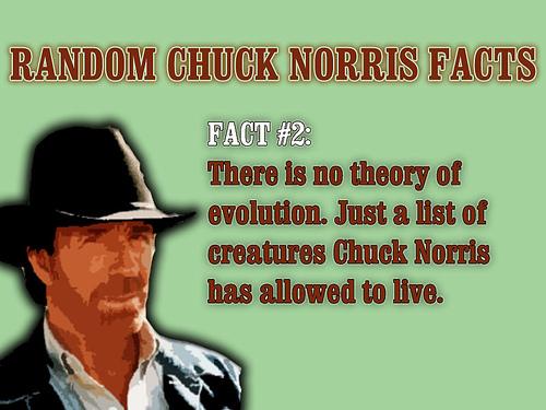 8de6c_chuck-norris-evolution.jpg