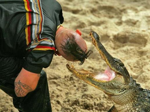 alligator-wrestling.jpg