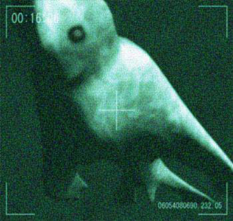 antarctic_humanoid_ningen.jpg
