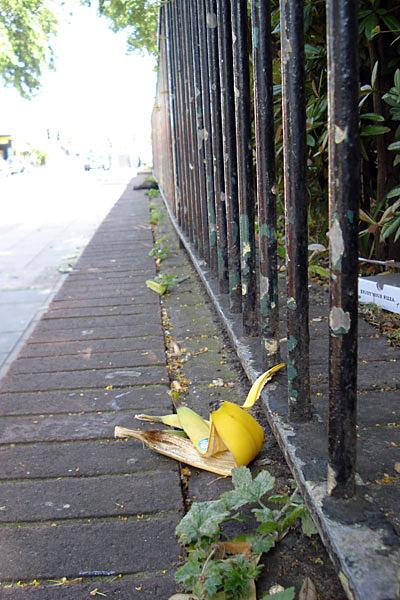 banana fence