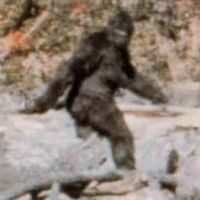 blurry-bigfoot.jpg