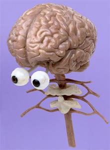 brain-eyes.jpg