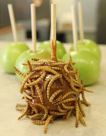 caramel-apple-with-maggots.jpg