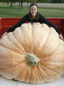 christy-harp_giant-pumpkin.jpg