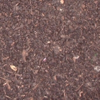 compost-mulch.jpg