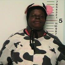 cowsuit-woman.jpg