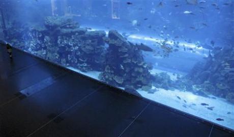 dubai-aquarium-leak.jpg