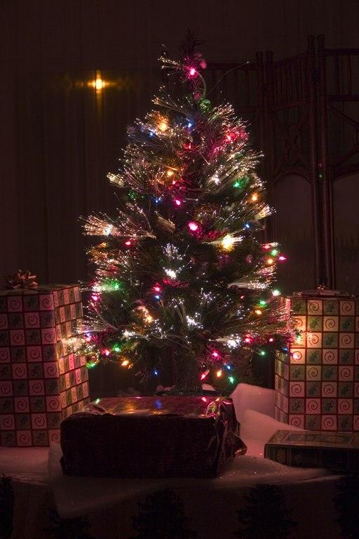 fiber-optic_christmas_tree.jpg
