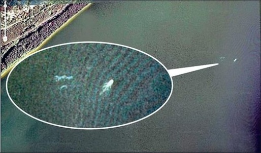 google-earth-nessie.jpg