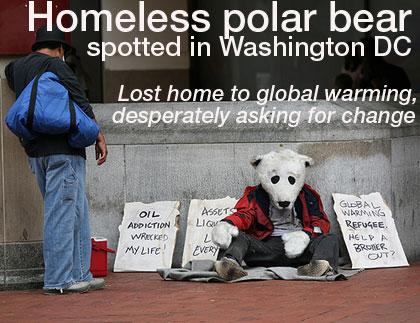 homelesspolarbear.jpg