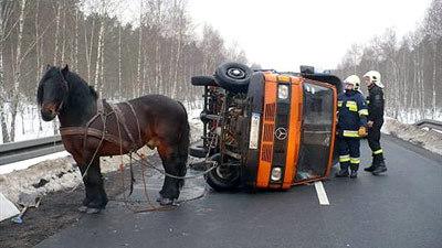 horse-van-wreck.jpg