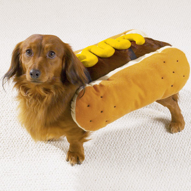 hot-dog-mustard-small.jpg