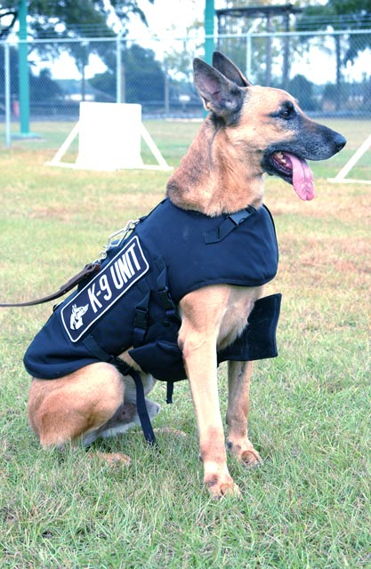k9-unit-police-dog.jpg