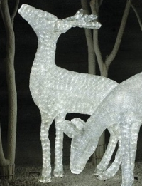 led-light-deer.jpg