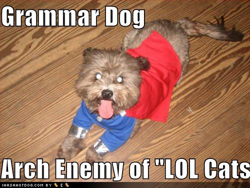 loldogs-cute-puppy-pictures-grammardog.jpg