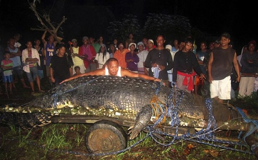 lolong-worlds-largest-saltwater-crocodile-dead