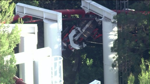 This is what happens when a roller coaster hits a tree.