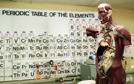 The periodic table has a new entry, or will soon.