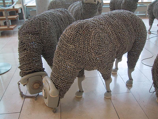 phone sheep 2