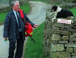 postman-dog.jpg