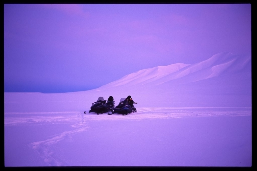 purple-snow.jpg