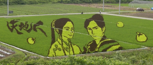 rice-paddy-art.jpg