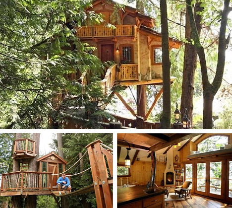seattle-tree-house-architectural-designers.jpg