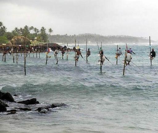 stilt-fishing.jpg