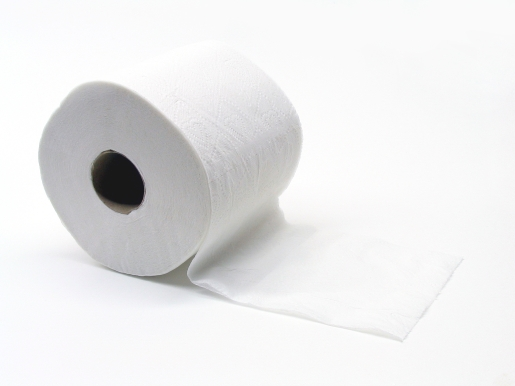 Cheap Toilet Paper Bulk